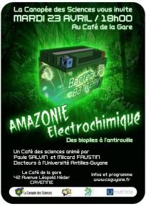 AFFICHE_AMAZONIE_ELECTROCHIMIQUE_CAFE_DES_SCIENCES8GUYANE