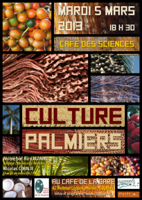 AFFICHE_CULTURE_PALMIER_CAFE_DES_SCIENCES8GUYANE