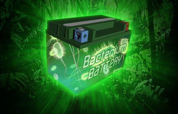 Amazonie électrochimique : des biopiles à l'antirouille