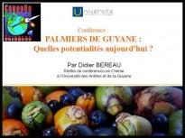 Palmiers de Guyane : quelles potentialités aujourd'hui ?