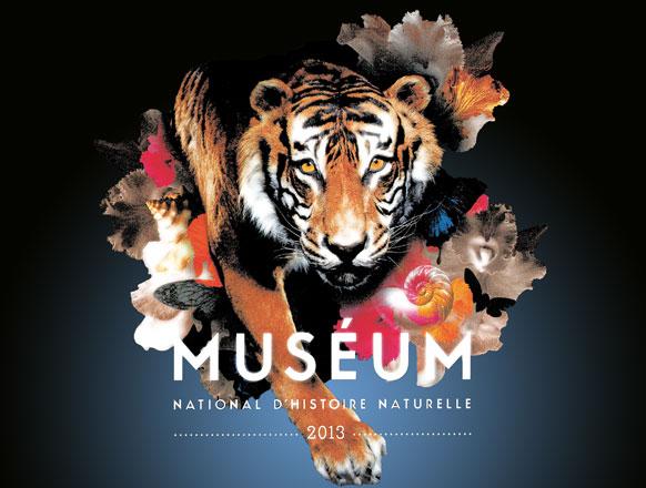 Muséum National d'Histoire Naturelle : missions et grandes expéditions