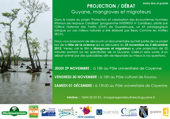 PROGRAMME_FETE_DE_LA_SCIENCE_GUADELOUPE_mangroves_et_migrateurs