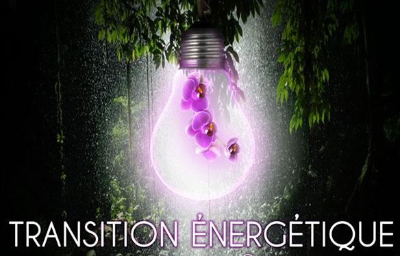Transition énergétique : les entreprises guyanaises répondent présent !!!