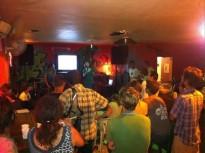 Fête de la Science à Kourou : La vie cachée des champignons