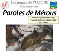 Fête de la Science à Cayenne : Projection «Paroles de Mérou»