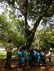 Fête de la science à Cayenne : Multi-animations, Montabo