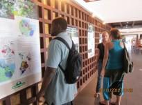 Fête de la Science à Cayenne : Exposition et Conférence «La gestion et l'aménagement des forêts en Guyane»