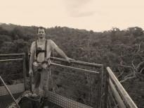 Utilisation de l'espace forestier par le Hocco