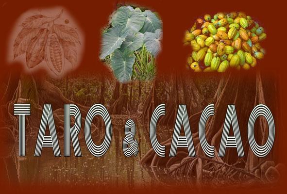 Taro & Cacao