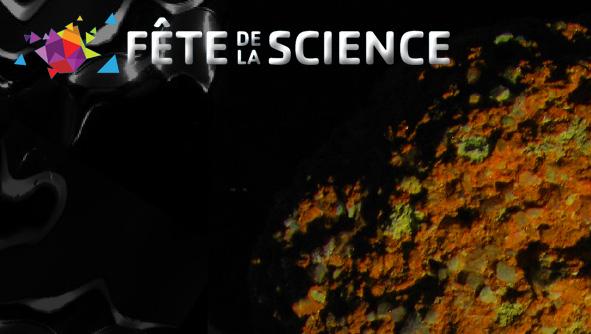De minamata à la Guyane française, La contamination de l'environnement par le mercure