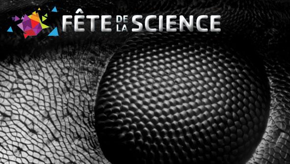 Expériences / Manipulations avec la Canopée des sciences : Insectes sociaux, microscopes, forces, énergies et ultra froid !