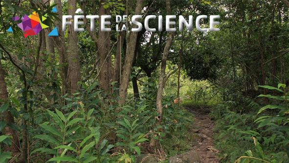 Sortie nature : Les peuplements d'arbres en Guyane