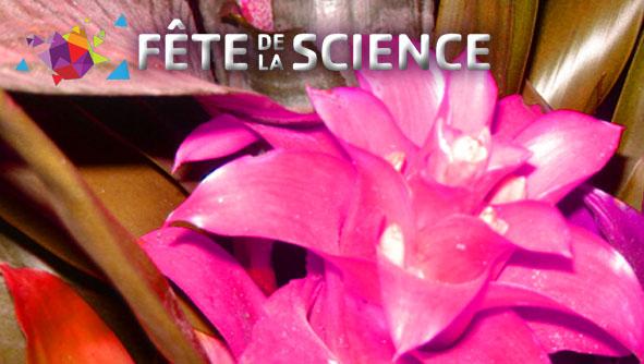 Des sciences dans le jardin