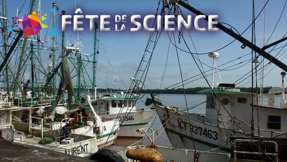 Découvrir la biologie marine avec l'Ifremer