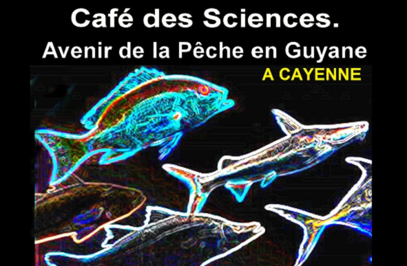 Avenir de la Pêche en Guyane