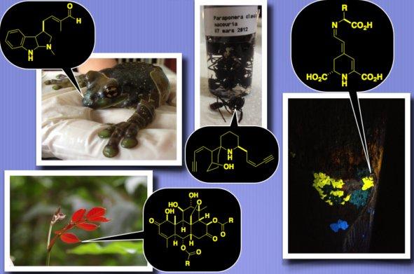 La chimie des substances naturelles: mythe ou réalité pour les innovations de demain?