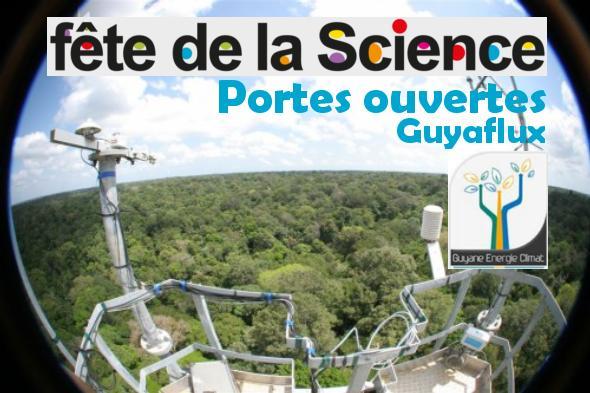 Visite : station de recherche de Paracou