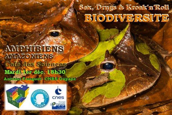 Biodiversité : Sex, Drugs & Kroak'n'Roll