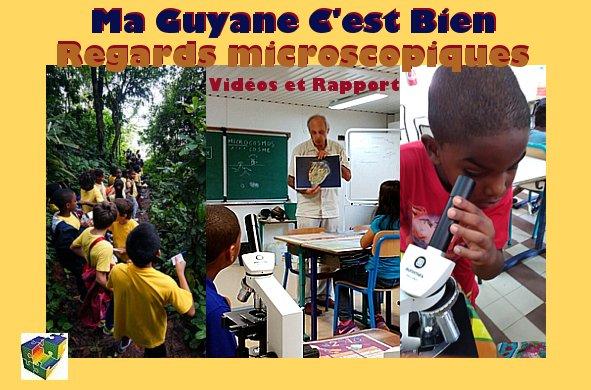 Ma Guyane C'est Bien – Regards microscopiques