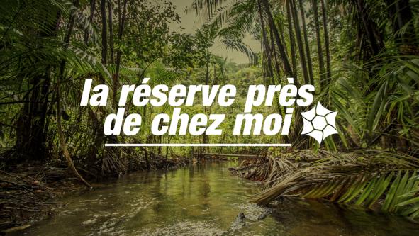 Fête de la nature en Guyane – La réserve naturelle nationale du Mont Grand Matoury
