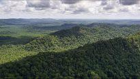 Mission Trois Pitons : une expédition scientifique au nord-est de la Guyane