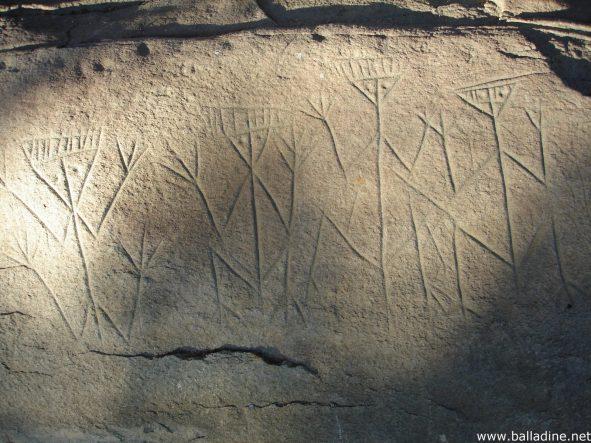 Quel patrimoine archéologique en Guyane ?