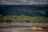 Civilisations précolombiennes : la fin du mythe de la forêt vierge
