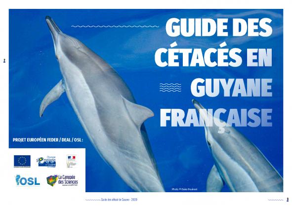 Le guide des Cétacés de Guyane